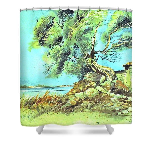 Mayorcan Tree Shower Curtain