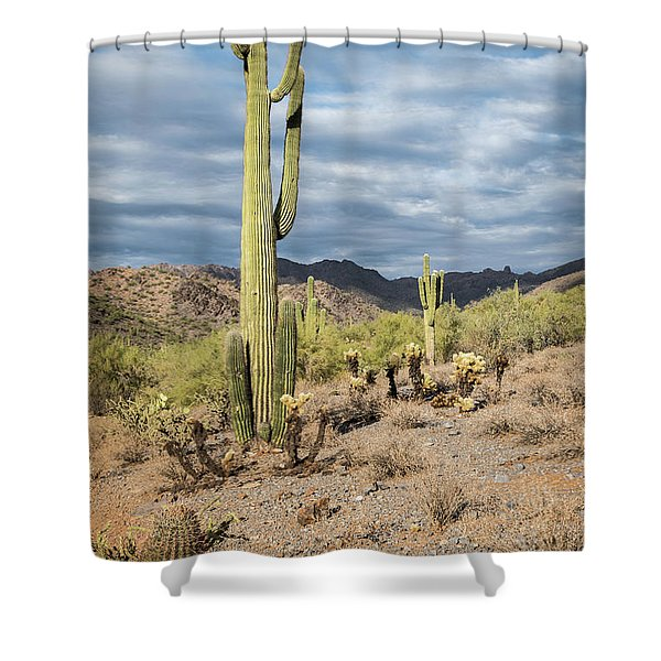 Mcdowell Cactus Shower Curtain
