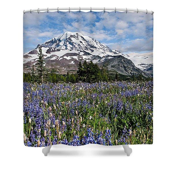 Meadow Of Lupine Near Mount Rainier Shower Curtain