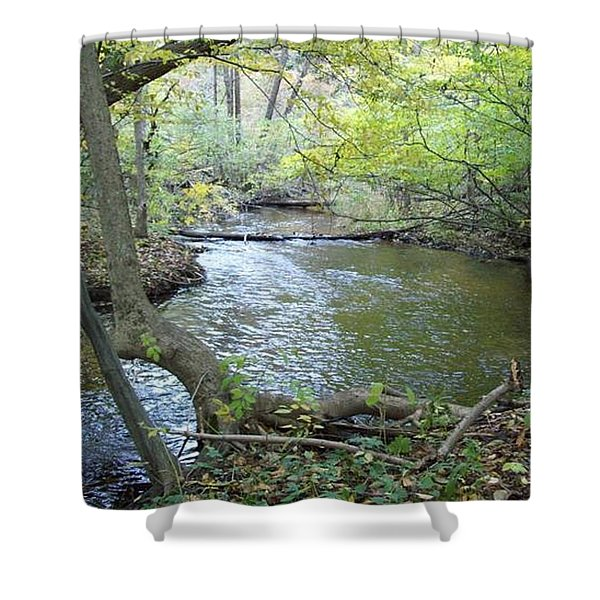 Mejestic Dreams Shower Curtain