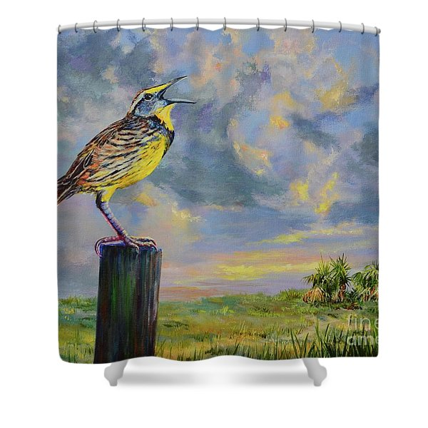 Melancholy Song Shower Curtain