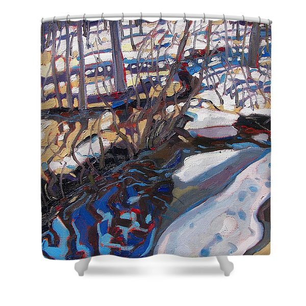 Melt Water And Ice At The Forest Edge Shower Curtain