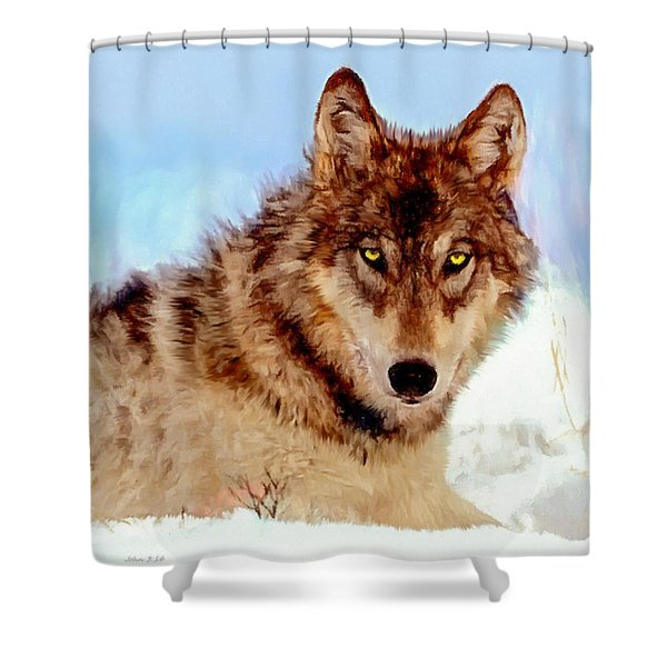Mexican Wolf Painting Shower Curtain