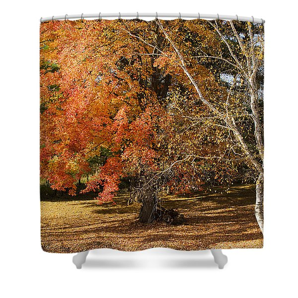 Michigan Autumn 1 Shower Curtain