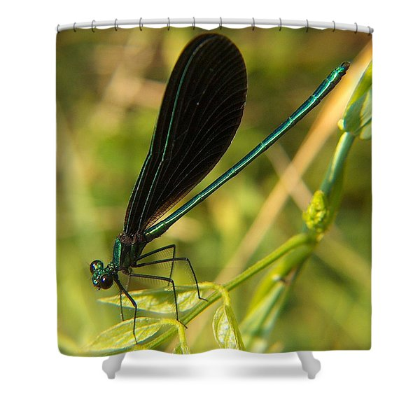 Michigan Damselfly Shower Curtain