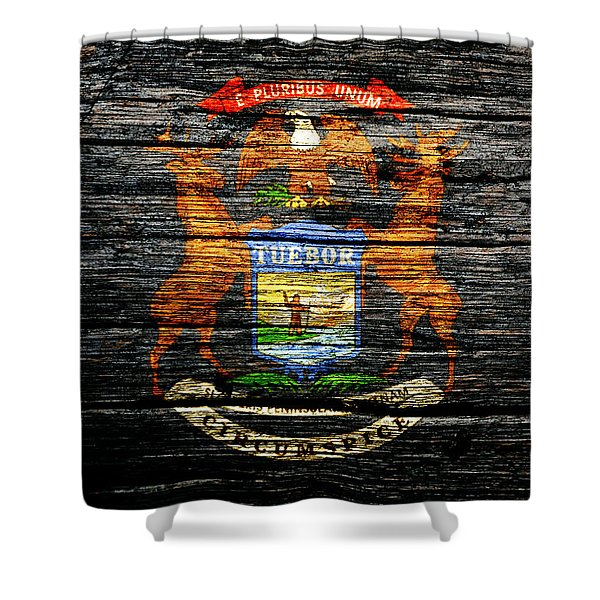 Michigan State Flag 1c Shower Curtain