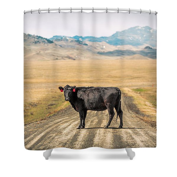 Middle Of The Road Shower Curtain