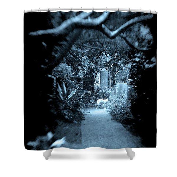 Midnight In The Garden O Shower Curtain