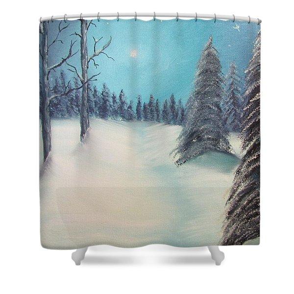 Midnight Silence Shower Curtain