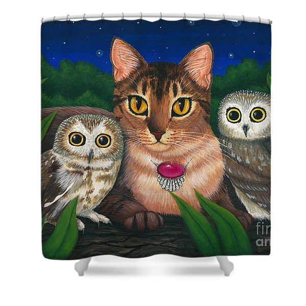 Midnight Watching - Abyssinian Cat Saw Whet Owls Shower Curtain