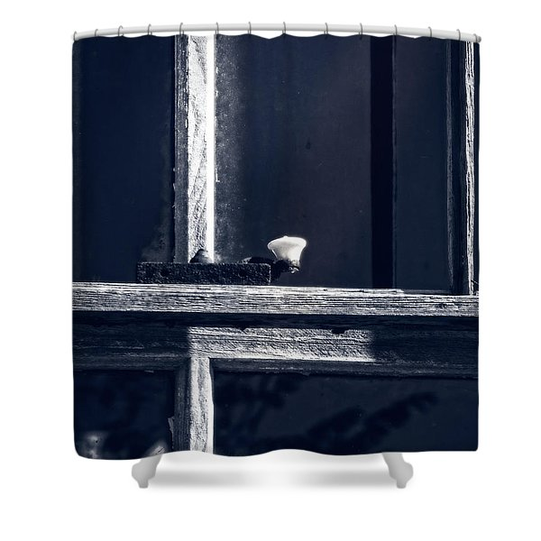 Midnight Window Shower Curtain