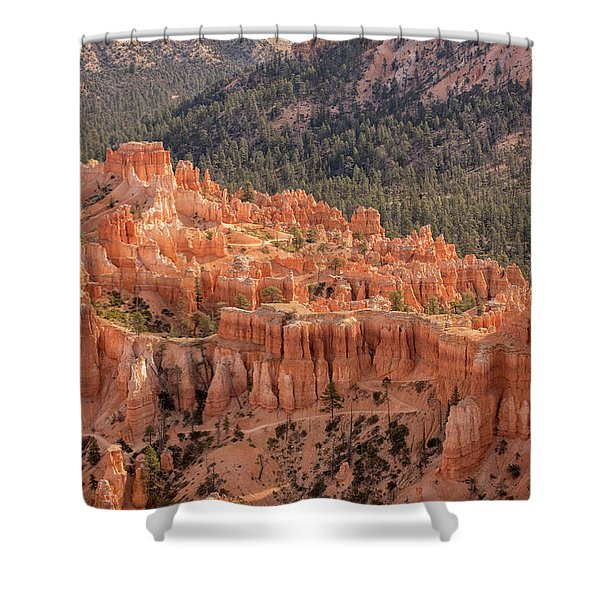 Mighty Fortress Shower Curtain
