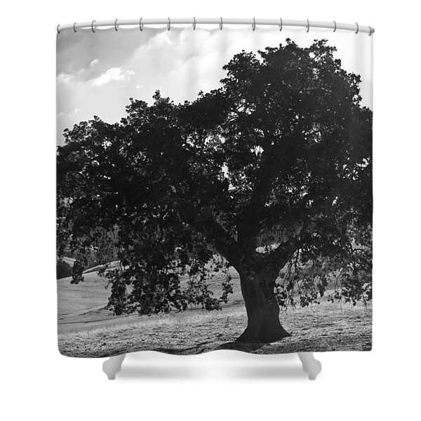 Mighty The Oak Shower Curtain
