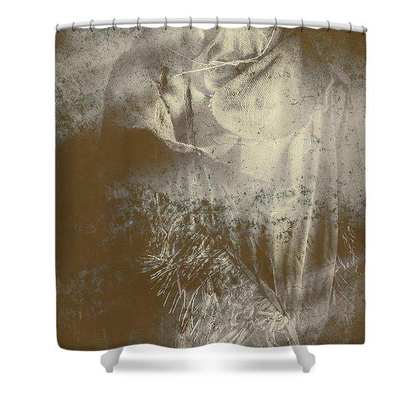 Mildew The Scarecrow Shower Curtain