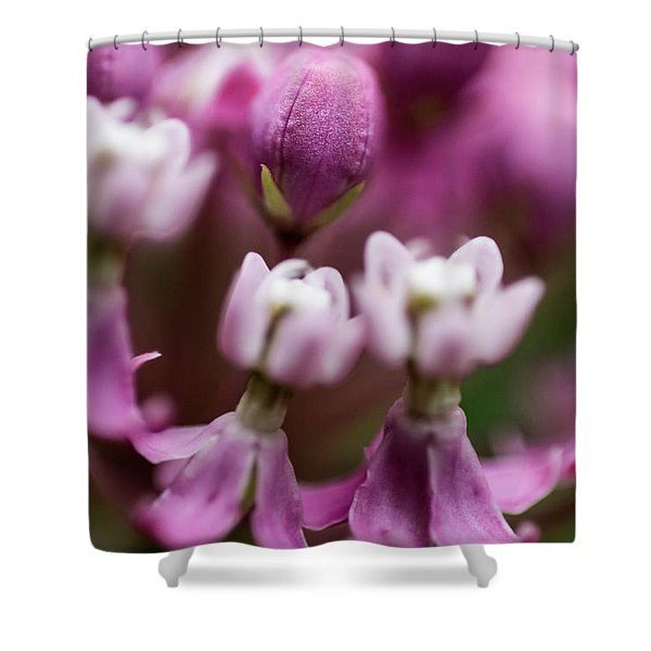 Milkweed Macro Shower Curtain