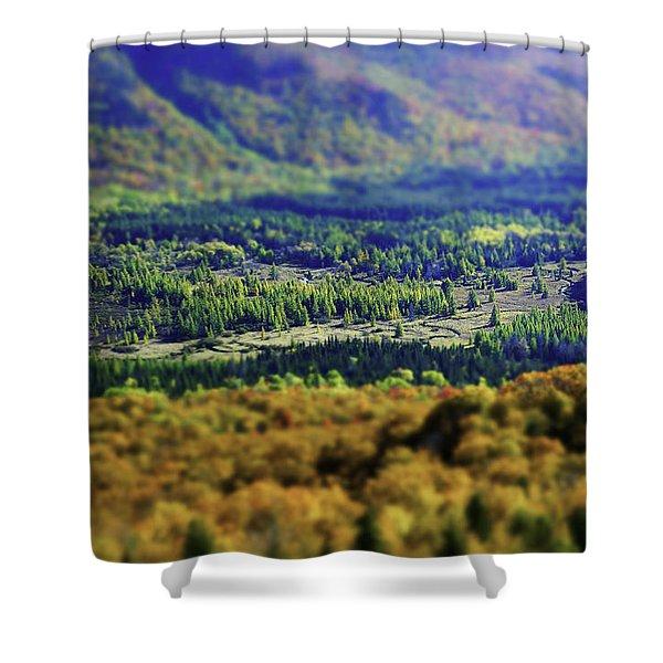 Mini Meadow Shower Curtain