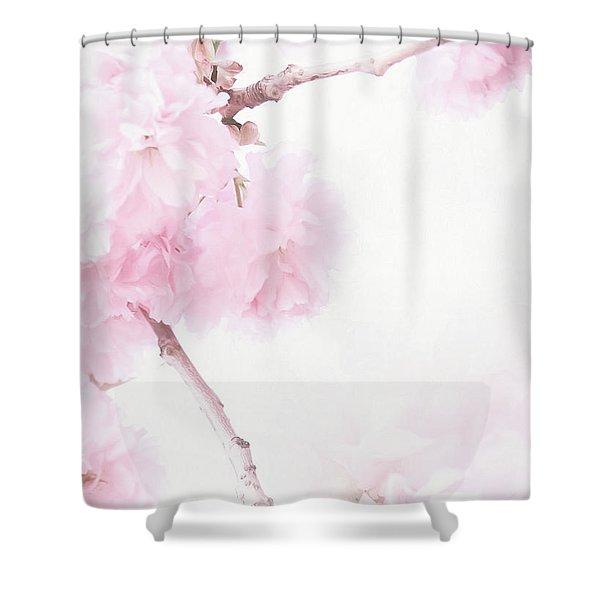 Minimalist Cherry Blossoms Shower Curtain