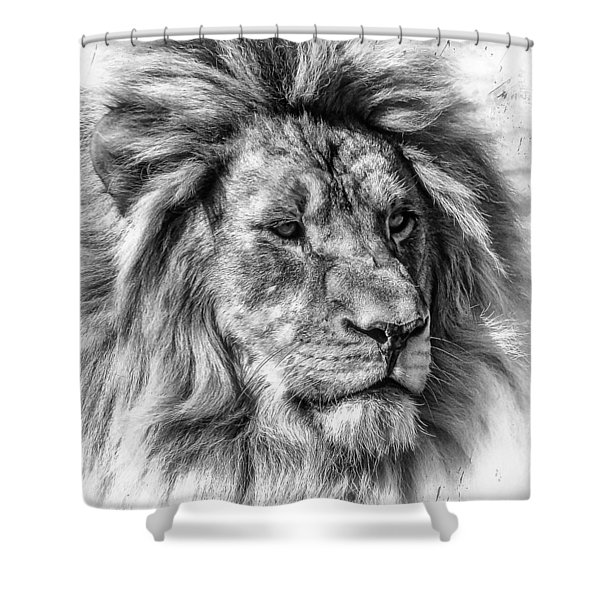 Mischievous  Shower Curtain