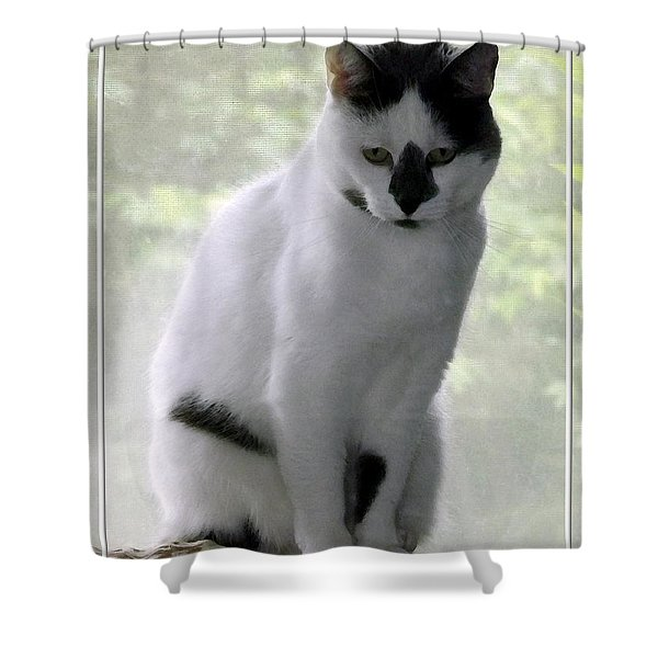 Miss Jerrie Cat With Watercolor Effect Shower Curtain