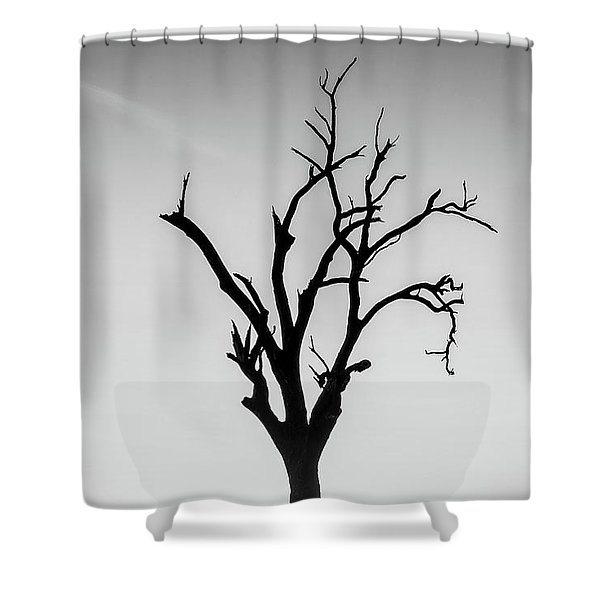 Missing Shower Curtain