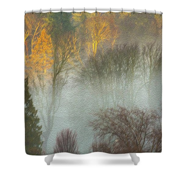 Mist In The Park Shower Curtain