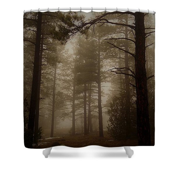 Misty Forest Morning Shower Curtain