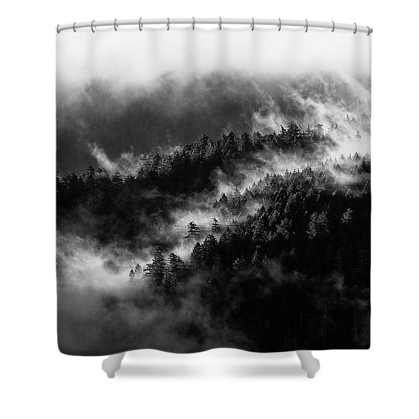 Shower Curtain featuring the photograph Misty Mountain Pines by Michael Hope