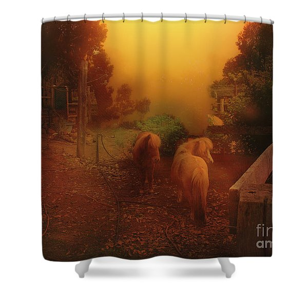 Misty Sundown Shower Curtain
