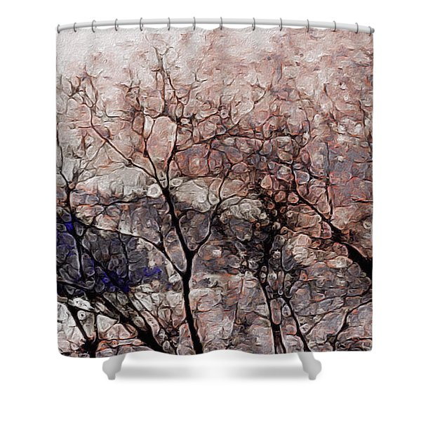 Misty Sunrise On Whidbey Island Shower Curtain