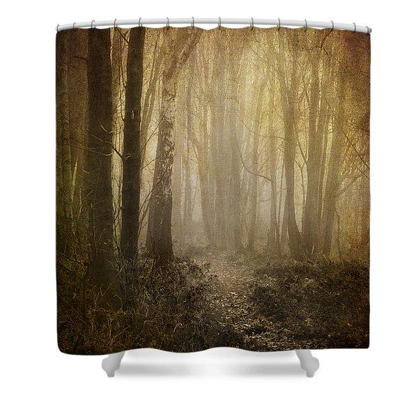 Misty Woodland Path Shower Curtain