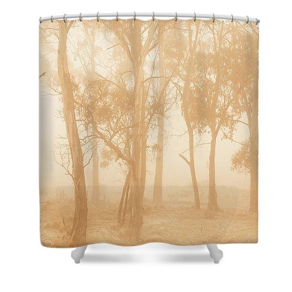 Misty Woods Shower Curtain