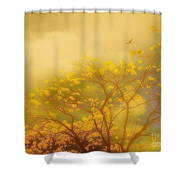 Misty Yellow Hue -poui Shower Curtain
