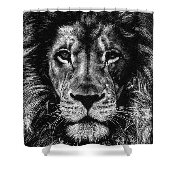 Mlinzi Shower Curtain