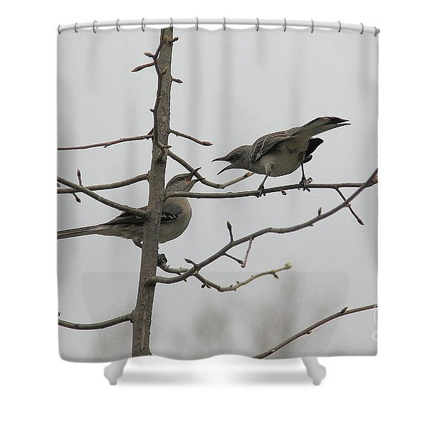 Mockingbirds Talk It Out Shower Curtain