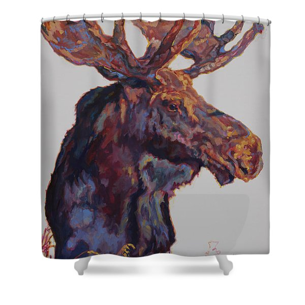 Modifier Shower Curtain