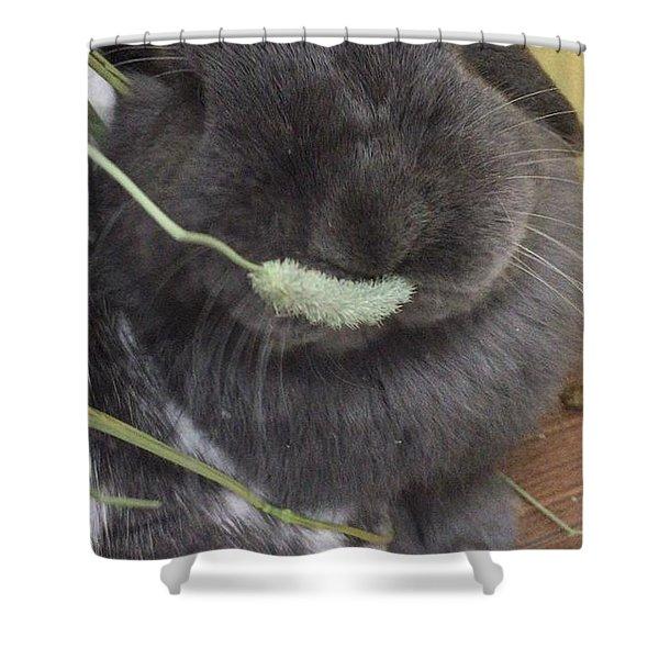 Mogmog Shower Curtain