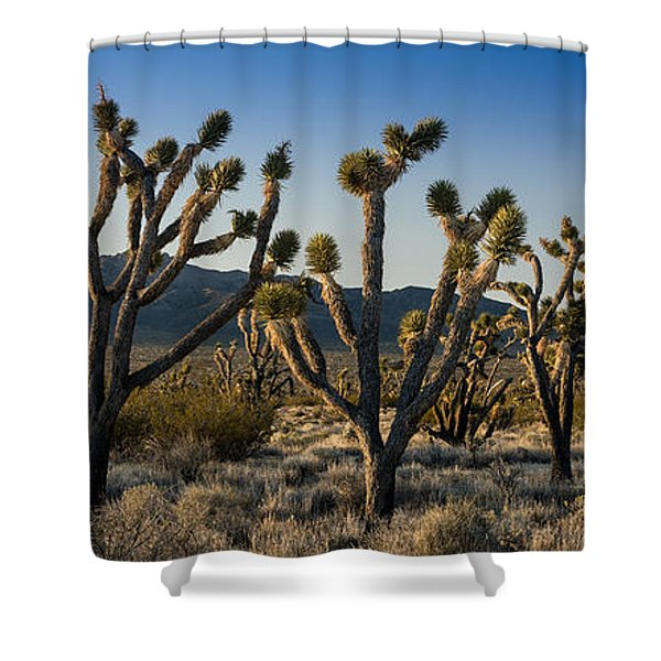 Mojave Desert Sunrise Shower Curtain