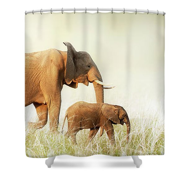 Mom And Baby Elephant Walking Through Tall Grass Shower Curtain