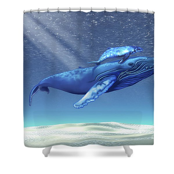Mom And Baby Humpback Whales Swim Shower Curtain