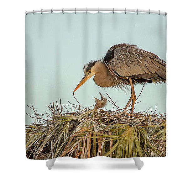 Mom And Chick Shower Curtain