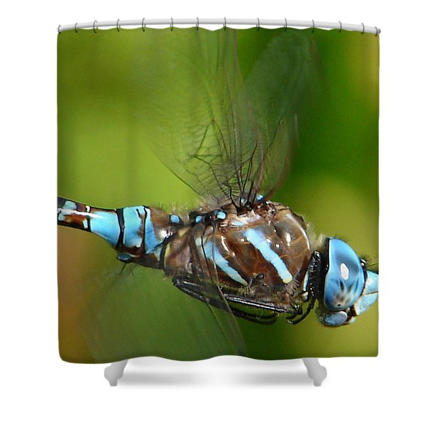 Moment In Time Shower Curtain