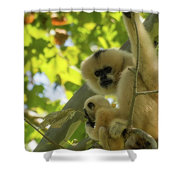 Mommy Gibbon Shower Curtain