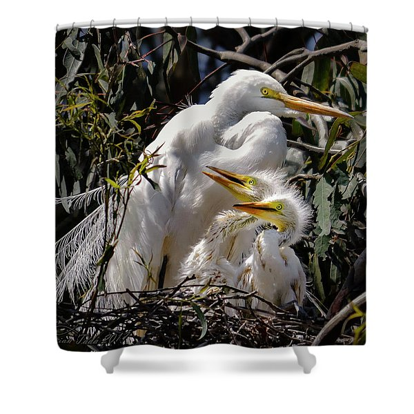 Mom's Watchful Eye Shower Curtain