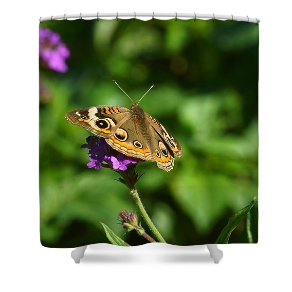 Monarch 3 Shower Curtain