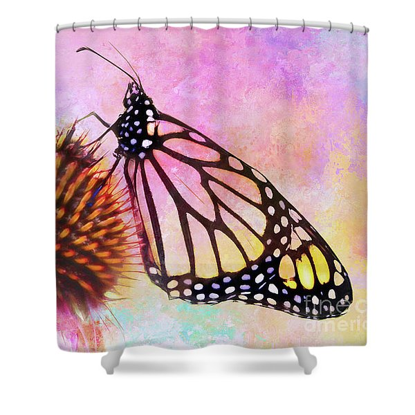 Monarch Butterfly On Coneflower Abstract Shower Curtain