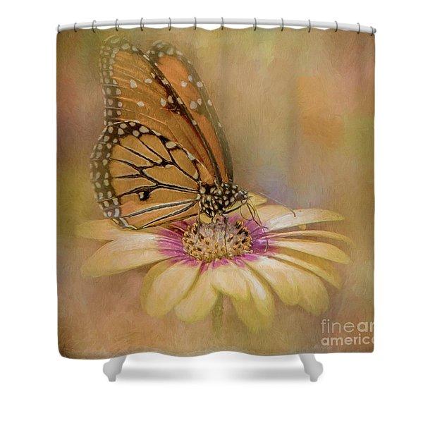Monarch On A Daisy Mum Shower Curtain