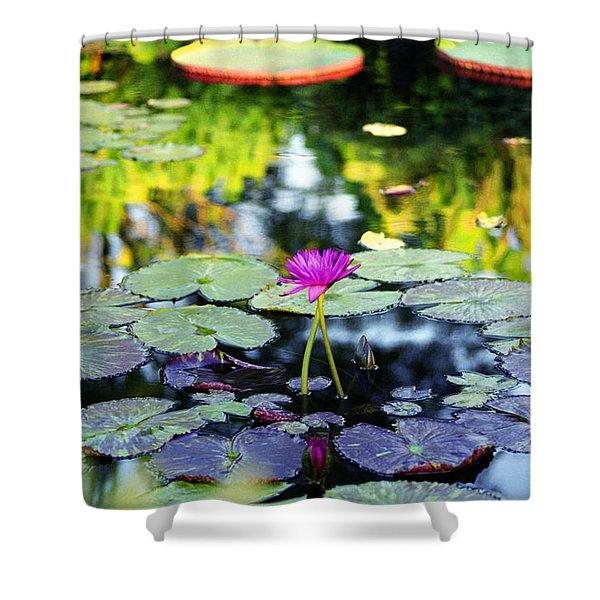 Monet Lilies Shower Curtain