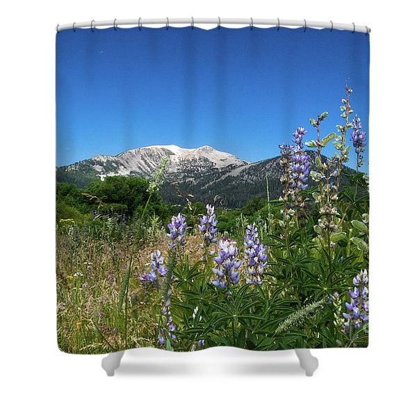 Mammoth Meadow   Shower Curtain