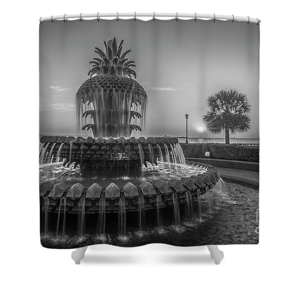 Monochrome Pineapple Shower Curtain