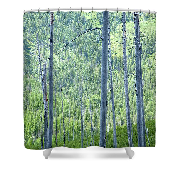Montana Trees Shower Curtain
